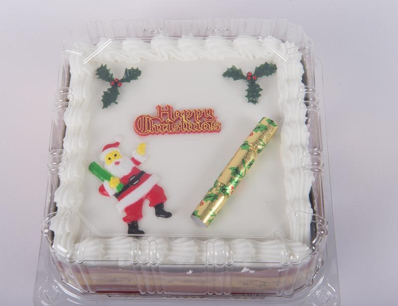 Luxury Fruit Brandy Christmas Cake
